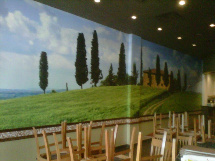 Digital Adhesive Vinyl Against Interior Wall